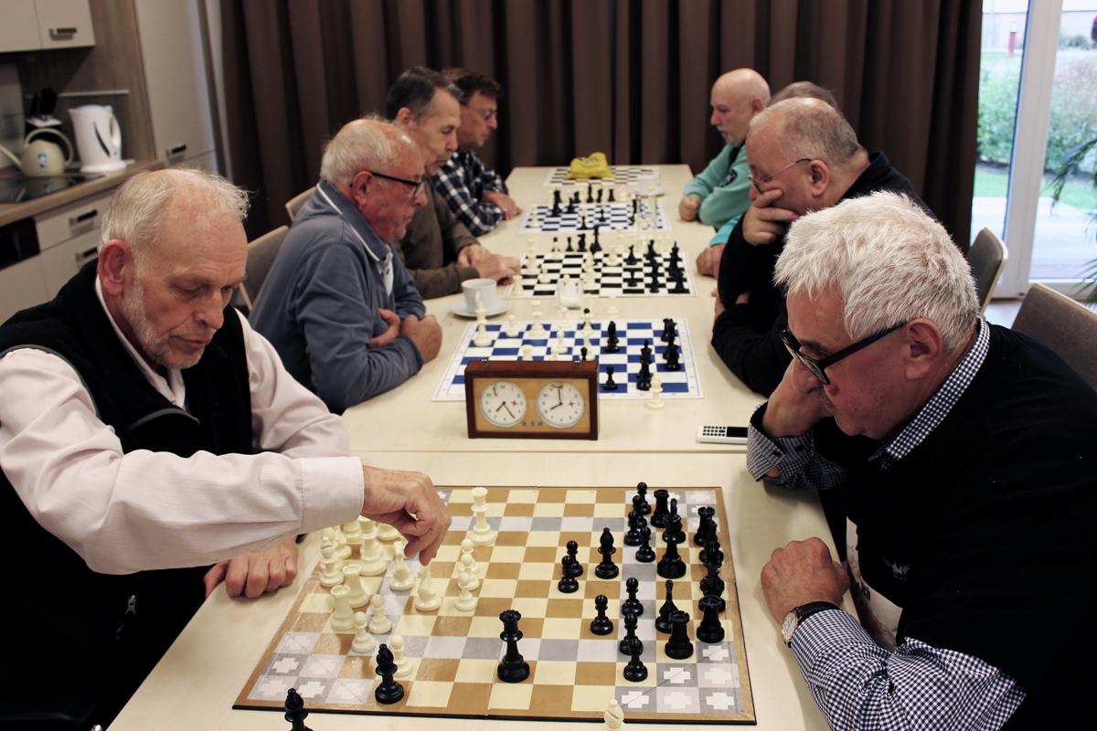 schach fuchsbau konzentration