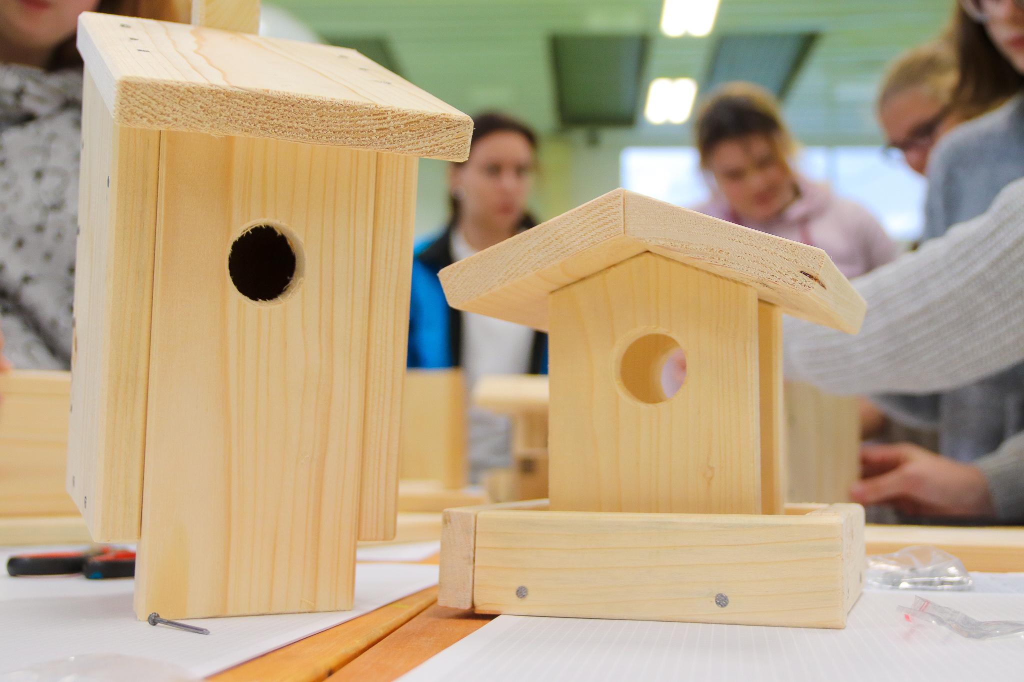Wir schenken Vögeln ein Zuhause