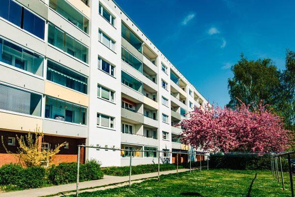 Wohnungen in der Spiegelsdorfer Wende von der Wohnungsbau-Genossenschaft Greifswald